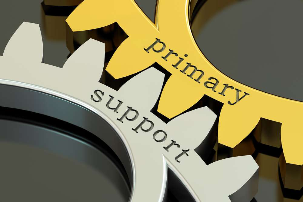 Primary School to School Support