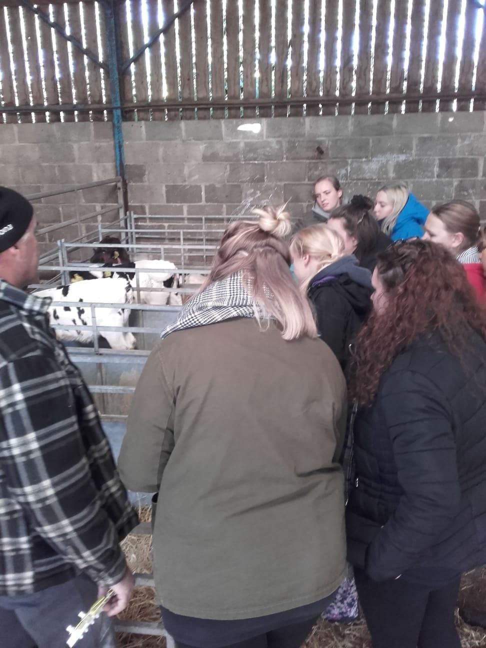 FACE Farming & Countryside Education, Oct 2019