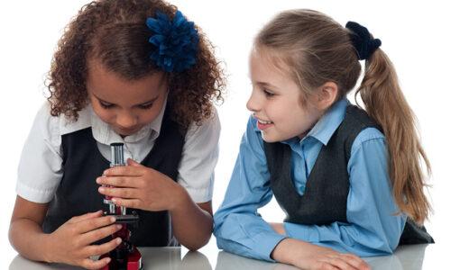 Free Primary school leadership