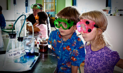 Primary Science Subject Leader Bootcamp