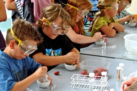 Getting practical: Working Scientifically in your classroom