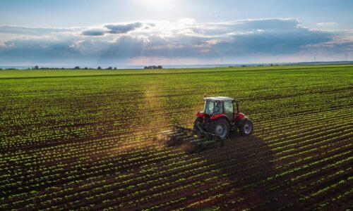 FACE farming context
