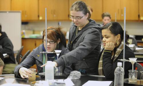 Network for Established Science Teachers