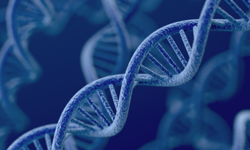 Double-helix-gene-changes-SM