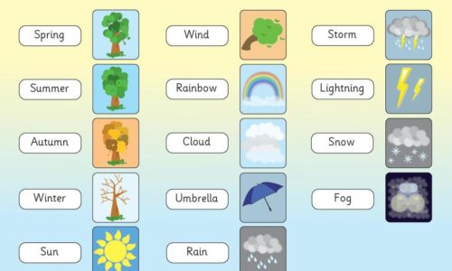 Science Weather words