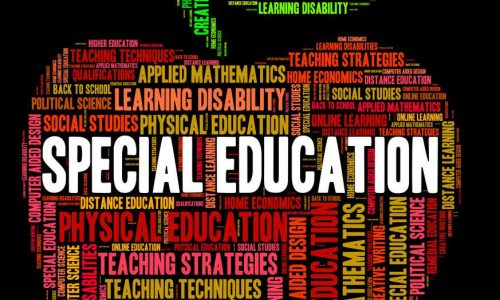 Special Education Meaning Slow Learner And Studying